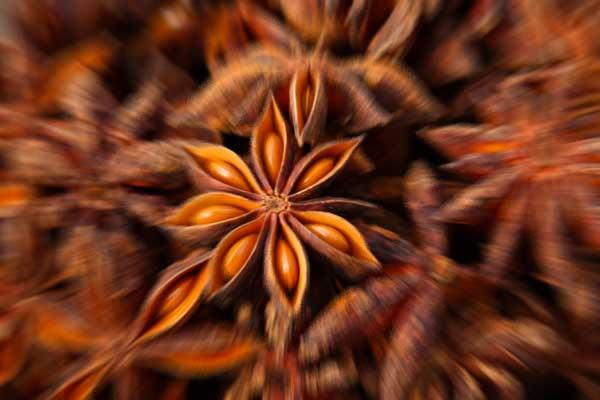 anice stellato osteria babazuf worlic